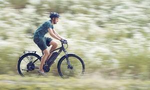 Vélo électrique Prophete 29