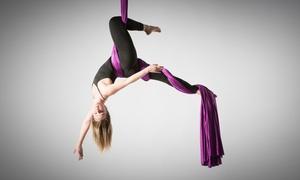 Poledance NRW:  90 Min. Workshop für Aerial-Silk- und -Hoop-Yoga für 1 oder 2 Personen bei Poledance NRW (bis zu 50% sparen*)