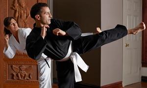 Ju Jitsu Academy: 10 o 20 lezioni a scelta tra cui Jiu Jitsu, MMA, grappling e difesa personale da Ju Jitsu Academy (sconto fino a 85%)