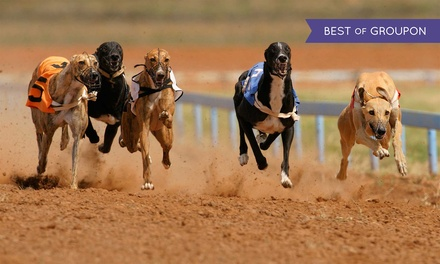 Coral Brighton Greyhound Stadium: Entry For Two With Food and Drink (73% Off)