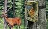 Wildlife-Kamera opt. mit 32 GB Speicherkarte