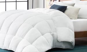 LUCID All-Season Down-Alternative Comforter