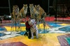 Shrine Circus at American Bank Center Arena - Multiple Dates Available