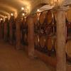 Degustazione vini, oli e salumi