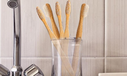 Organic and Biodegradable Bamboo Toothbrushes (4- or 6-Pack)