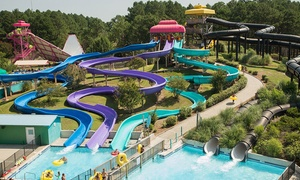 Up to 26% Off Admission to Myrtle Waves Water Park at Myrtle Waves Water Park, plus 6.0% Cash Back from Ebates.