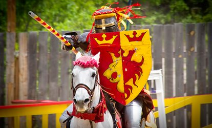 One-Day Ticket for a Kid or Adult to the Colorado Renaissance Festival (50% Off)