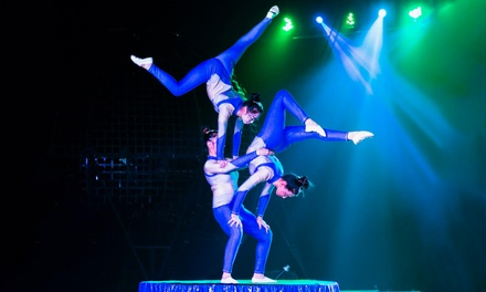 Garden Bros. Circus for Two Adults and Two Children (April 14 and 15)