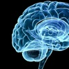 79% Off Cognitive Skills Assessment and More at LearningRX