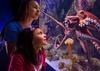 Up to 46% Off Annual Passes to Newport Aquarium