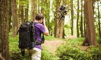 Herunterladbarer Onlinekurs für Inszenierte Sportfotografie mit 22 Lektionen bei PSD-Tutorials (50% sparen*)