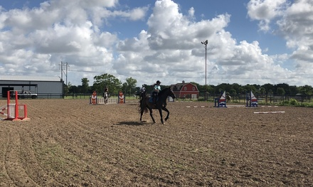 Katy Horse Riding - Deals in Katy, TX | Groupon