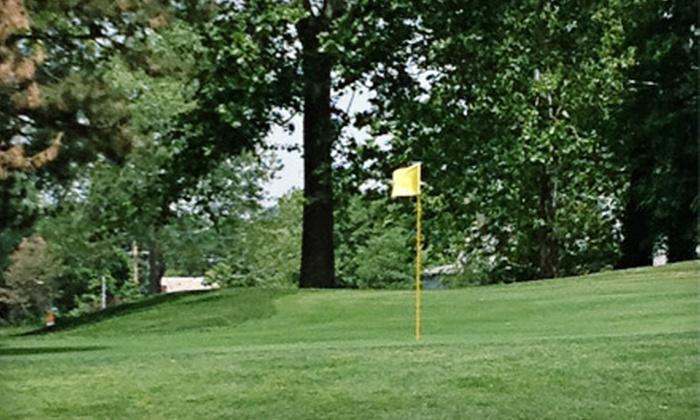 Steve Hogan Golf Course - Omaha: $20 for Four Nine-Hole Rounds of Golf at Steve Hogan Golf Course ($40 Value)