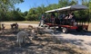 Up to 53% Off Passes to The Drive-Thru Zoo at Monsoon Lagoon