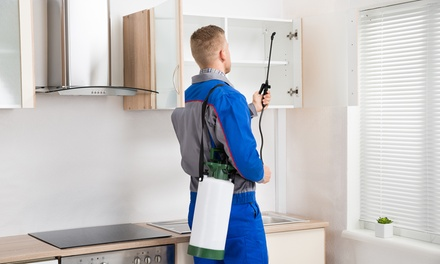 $69 for Internal and External Pest Service from Zapem Pest Management (Up to $210 Value)