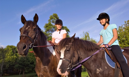 Horseback-Riding Lesson for One or Two, or One Week of Summer Camp at A Bit of Luck Farm (Up to 60% Off)