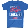 Chicago Championship Baseball Tees (Size 2X)