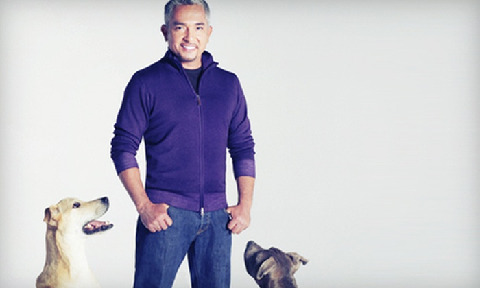Cesar Millan Live - Lynn Auditorium: $22 to See Cesar Millan Live! at Lynn Auditorium on July 11 at 7:30 p.m. (Up to $44.20 Value)