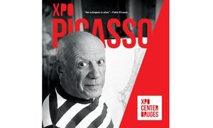 NV site Oud Sint-Jan: Découvrez Picasso et Miró sur le site Oud Sint-Jan avec 50% de réduction