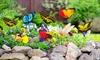 24er-, 48er- oder 72er-Set Schmetterlinge und Libellen auf Erdspieß