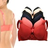 Angelina Plus-Size Bras with Cushioned and Convertible Straps (6-Pack)