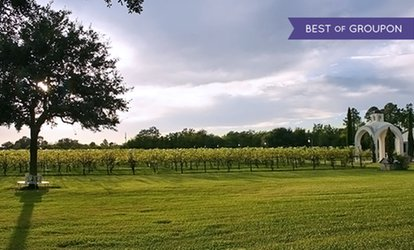 image for $20.50 for Vineyard Tour for Two and a $20 Credit at Haak Vineyards & Winery ($40 Value)