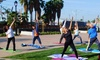 Yoga with Elise - YOGA SANTA ANITA: 10, 20, or One Month Unlimited Yoga Classes at Yoga With Elise (Up to 60% Off)