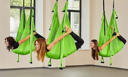 69 for an aerial yoga swing trapeze fitness home gym hammock  69 for an aerial yoga swing trapeze fitness home gym hammock      rh   au toyslux co