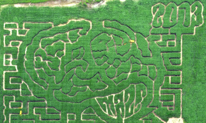 The Mid-South Maze - Memphis: $12 for a Visit for Two Adults and Two Children to The Mid-South Maze ($24 Value)