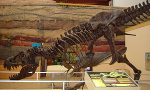 Up to 57% Off at New Mexico Museum of Natural History at New Mexico Museum of Natural History, plus 6.0% Cash Back from Ebates.