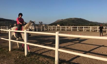 5 o 10 clases de equitación para 1 persona desde 49,95 € en Hípica Formentor