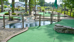 Broadway Driving Range & Miniature Golf: $17 for Range Balls or Mini Golf at Broadway Driving Range & Miniature Golf in Depew (Up to $34 Value)