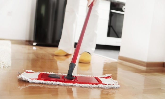 The Cleaning Lady Inc. - Boston: Two Hours of Cleaning Services from The Cleaning Lady Inc. (45% Off)
