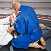 Up to 65% Off MMA Classes