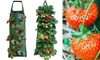 Set of Two Hanging Strawberry Planting Grow Bags