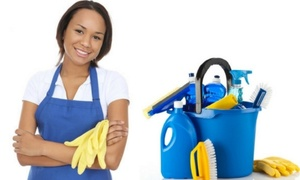 VR Cleaning Services: Three- Four- or Five-Hour House Cleaning and Ironing Service with VR Cleaning Services