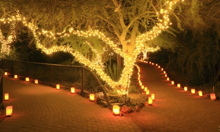 One, Two or Three Strings of 50, 100 or 200 LED SolarPowered Fairy Lights from £4.99