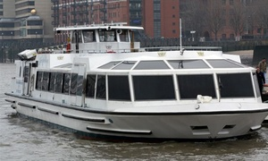 River Thames Tours: Lord Mayor's Fireworks Sightseeing Cruise with River Thames Tours