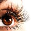 $69 for Eyelash Extensions at Le JJ Belle Pedicure