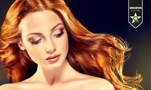 Basic Hair & Beauty: Taglio capelli, trattamento specifico, colore e shatush o balayage (sconto fino a 73%)