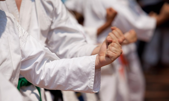 Macon's Martial Arts - Multiple Locations: Up to 79% Off Four Weeks of Kids and Adult Karate Classes with Uniform at Macon's Martial Arts