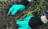 Handschuhe für Gartenarbeit