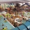 Up to 56% Off Indoor Water-Park Outing