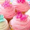 Box of Six Cupcakes, Blackburn