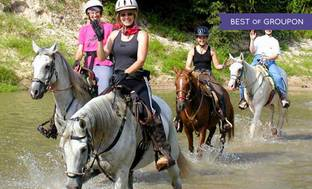 Things To Do In Humble Deals In Humble Tx Groupon