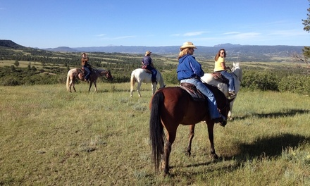 One-Hour Horseback Trail Ride for One, Two, or Four at HRCA Backcountry Wilderness (Up to 44% Off)