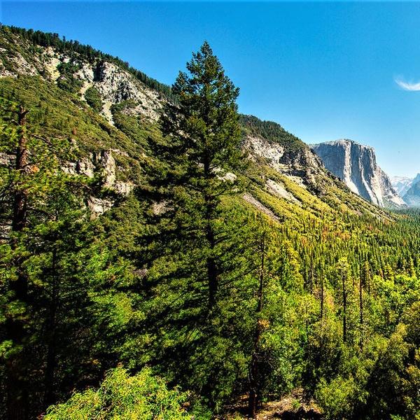 Yosemite Campeggio pieno hook up