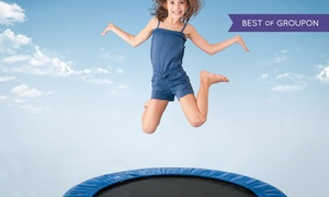 Dolphinarium: 15- or 30-Minute Trampoline Session for Child or Adult at Dolphinarium (Up to 63% Off)