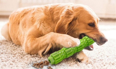 Dog's Chew Moral Rod Toy