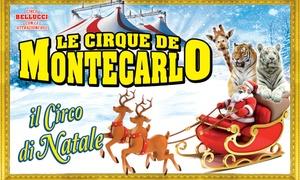 Le Cirque de Montecarlo a Natale a Torino : Le Cirque de Montecarlo - dal 15 dicembre al 7 gennaio a Torino (sconto fino a 46%)